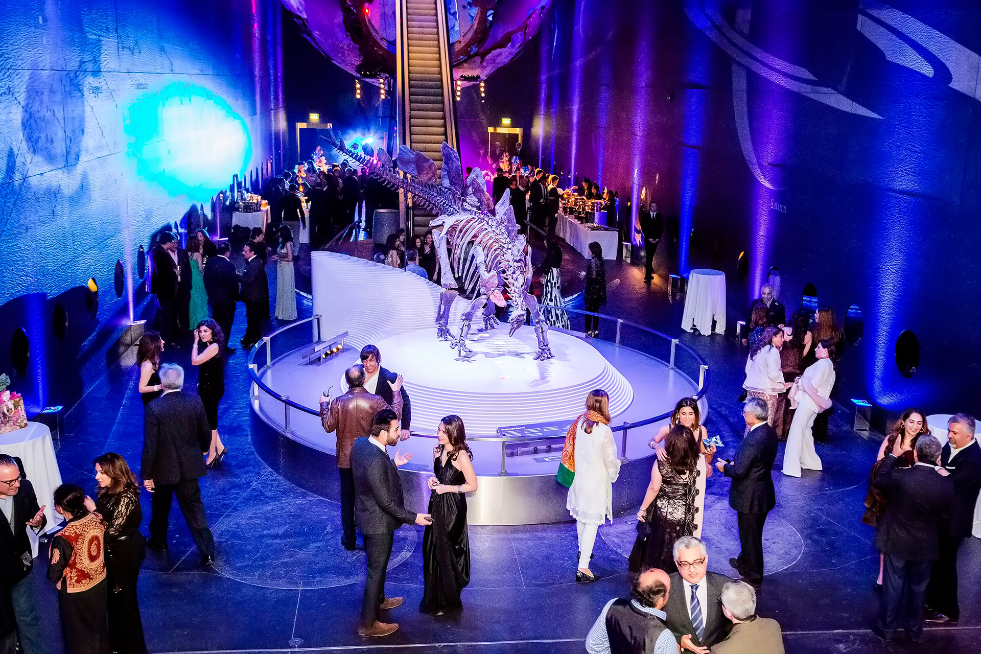 Event Natural History Museum Birthday Party