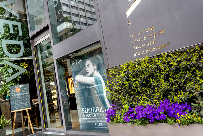 AVEDA Salon and Spa - exterior shot for Treatwell by Renata Boruch at Belle Imaging Commercial Photographer London